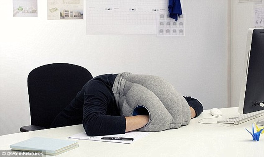 Snooze At Office For Skyrocketing Productivity